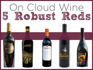 On Cloud Wine 5 Robust Reds