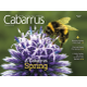 In this Issue A Cabarrus Spring