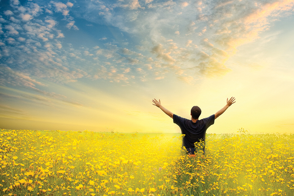 Man standing in flower field with arms raised to sky