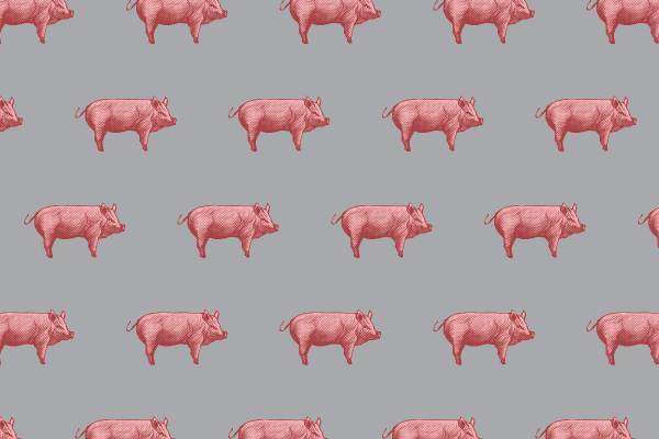 Pink piglets, gray background, repeating pattern