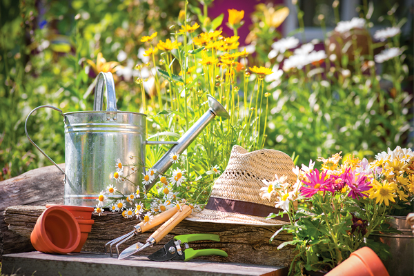 planning your garden outdoor sanctuary