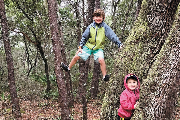 Kids playing outside in the woods, climbing trees and enjoying nature