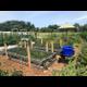 Grow  Harvest Food  Friendship at the Horn Farm Center Community Garden
