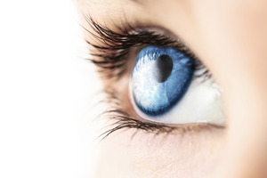 Medium_istock_000018380453large_blue-eye-macro