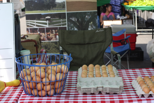 You can find fresh eggs at the market.