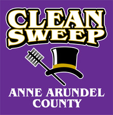 Medium clean sweep logo purple